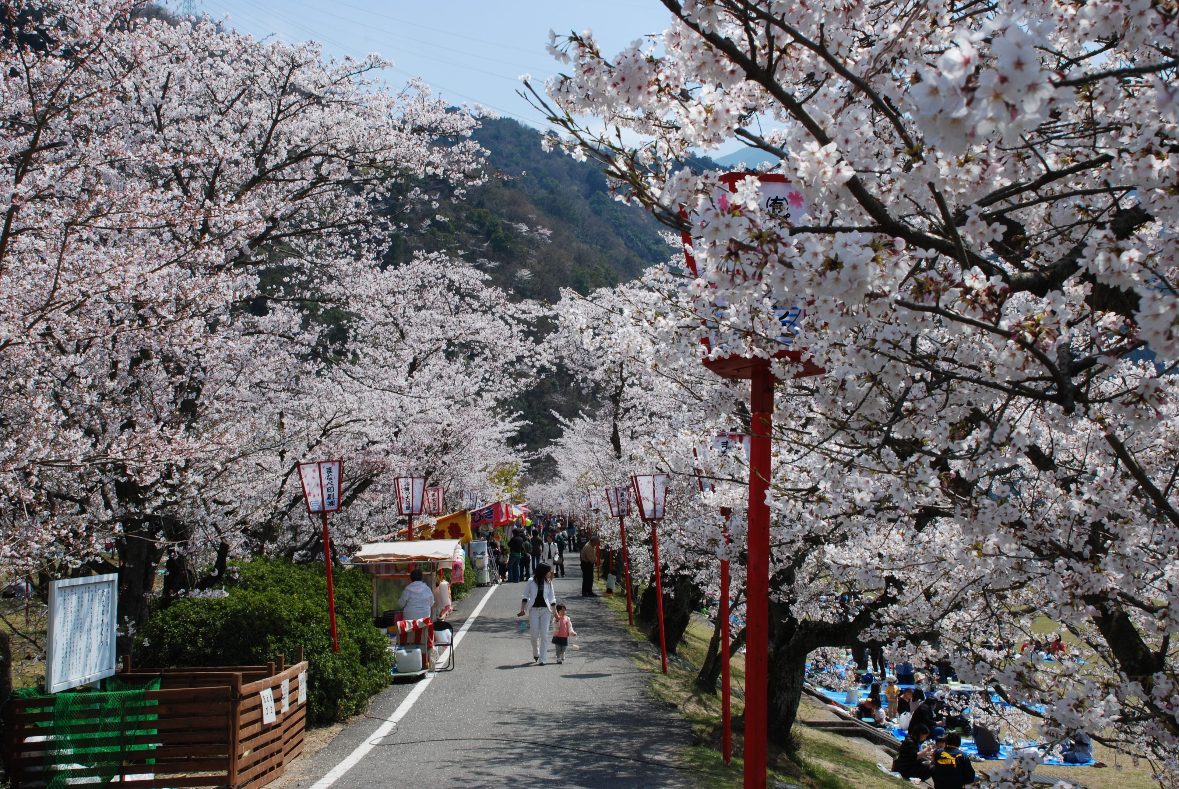 愛媛県西条市武丈公園