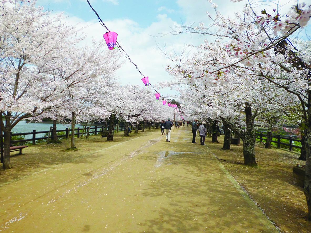 101_亀鶴公園