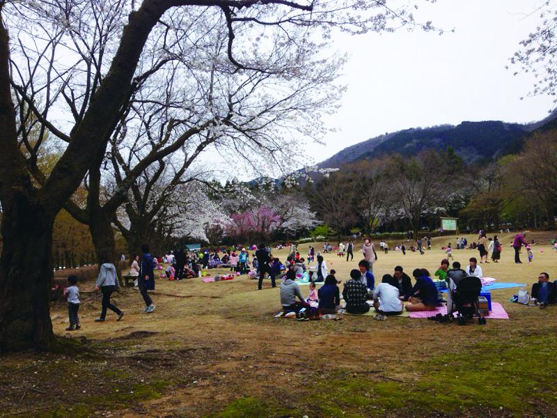 115_石川県農業試験場