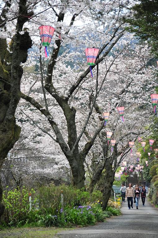 118_飯山白山森林公園