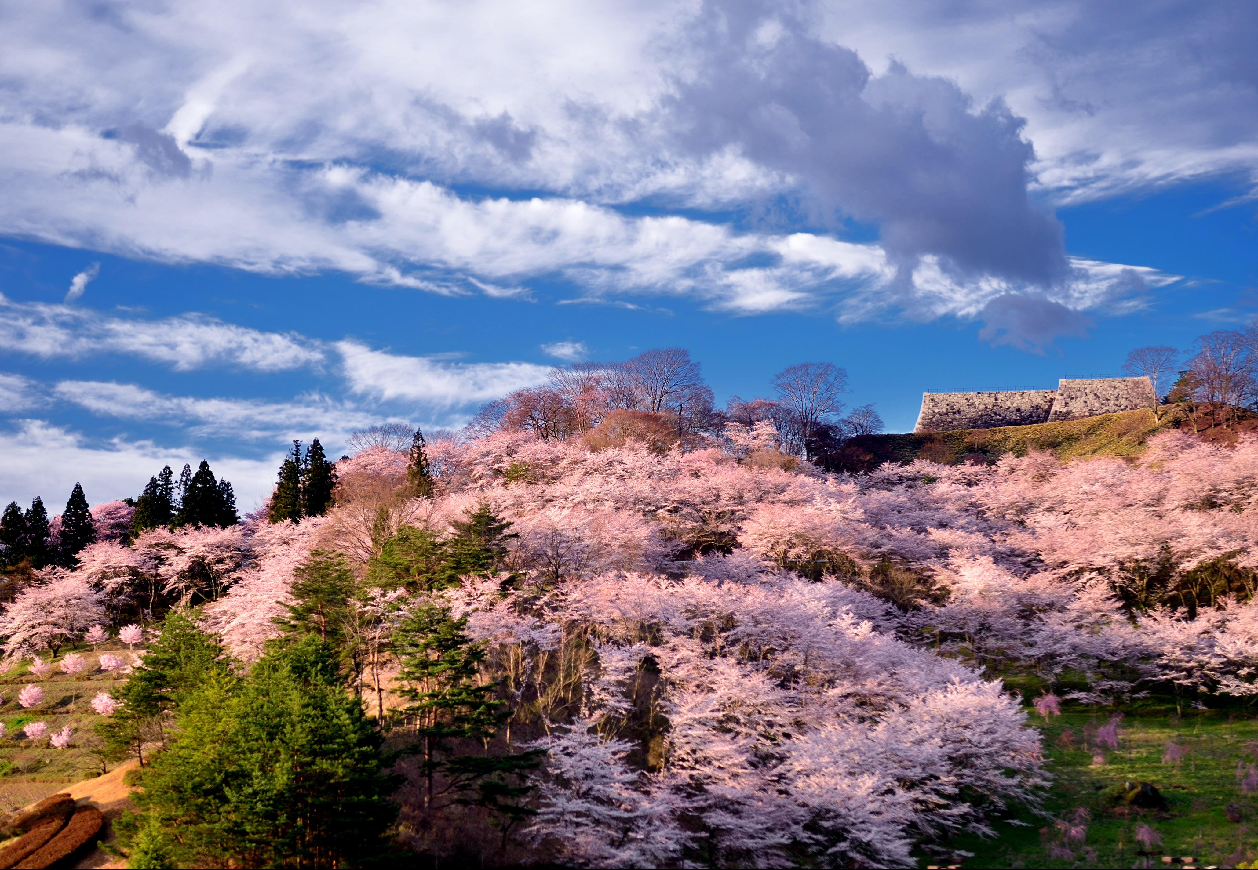 14 福島県二本松市「霞ケ城公園」