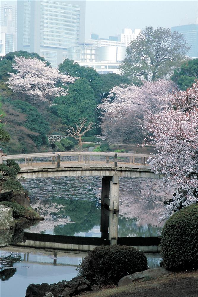 29 東京都新宿区「新宿御苑」