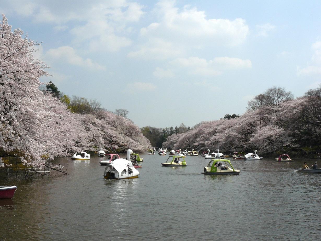 32 東京都武蔵野市「井の頭恩賜公園」