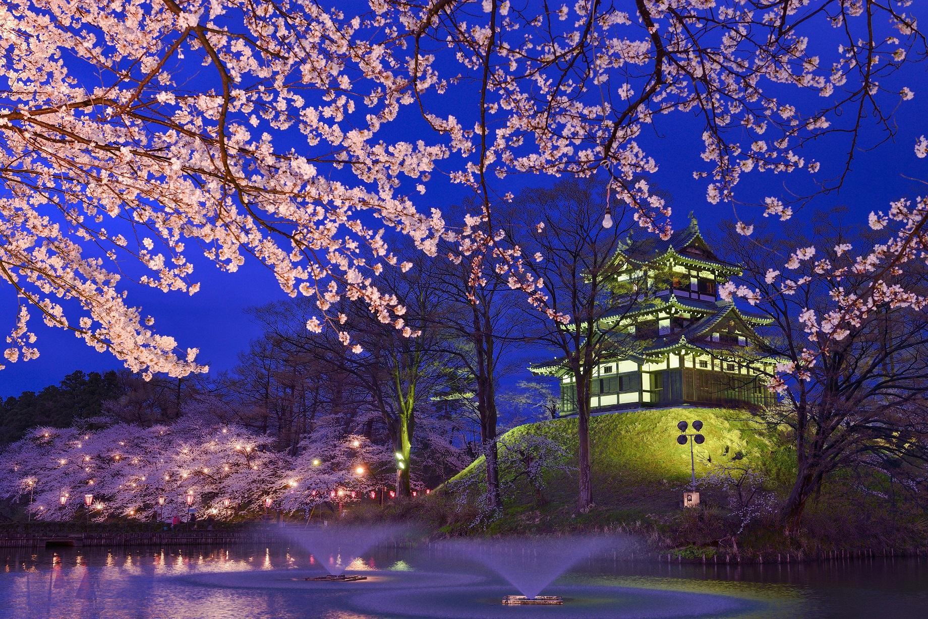 37 新潟県上越市「高田公園」