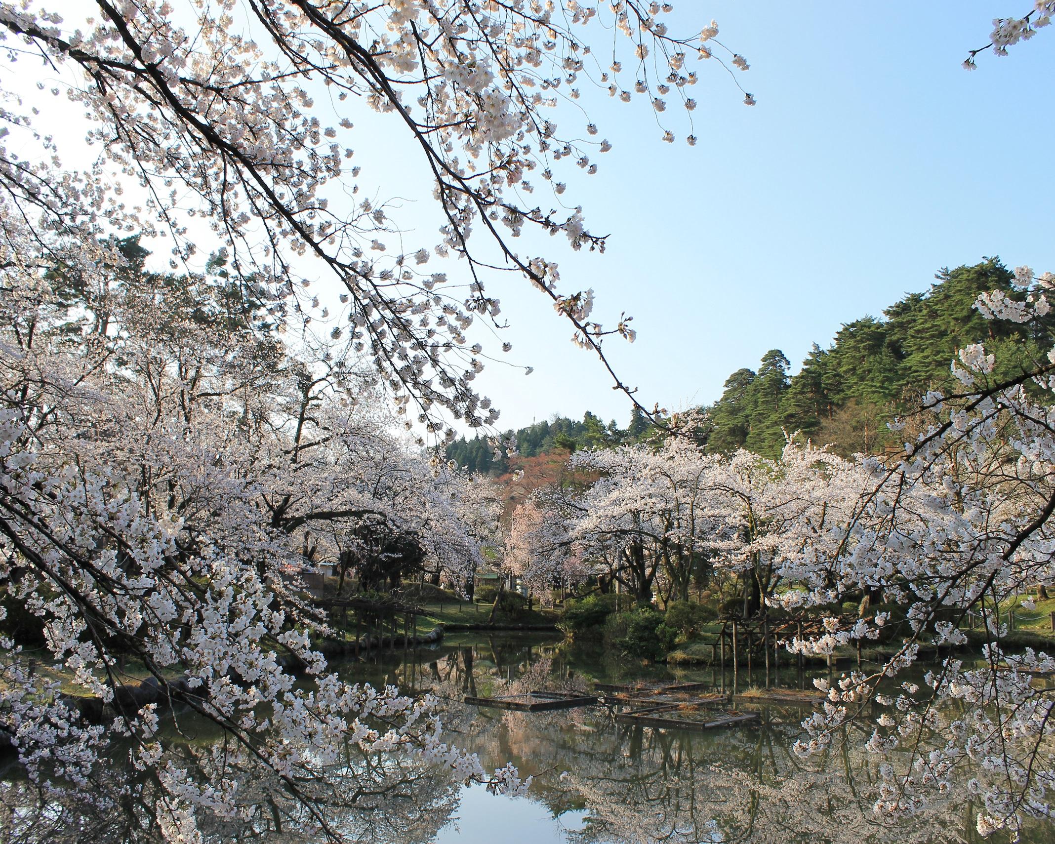 38 新潟県五泉市「村松公園」