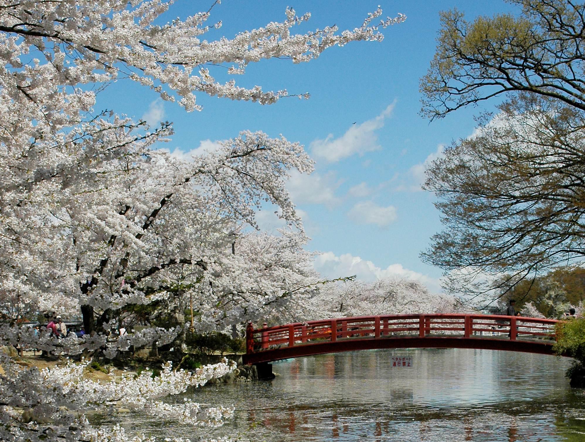 47 長野県須坂市「臥竜公園」