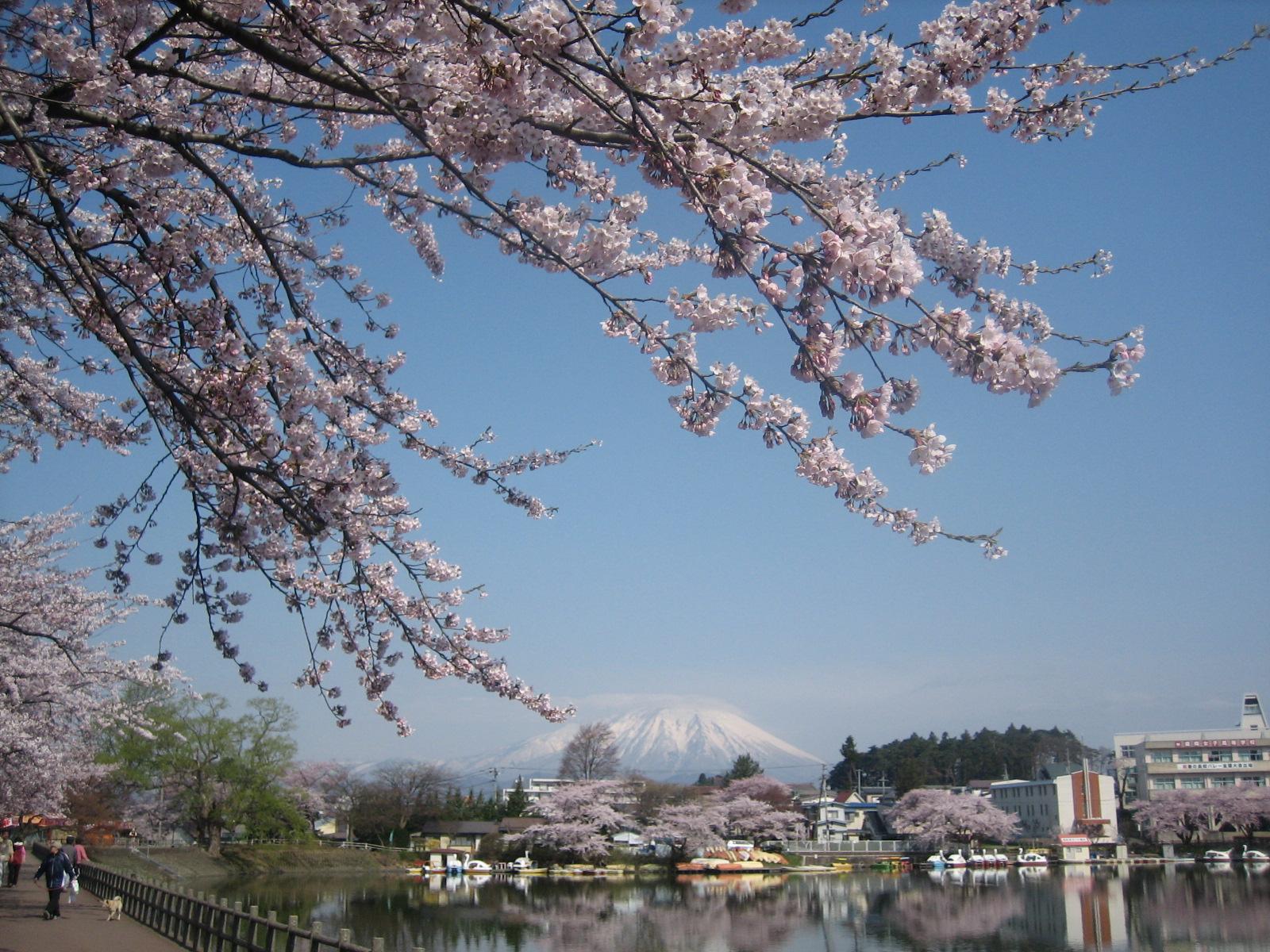 5 岩手県盛岡市「高松公園」