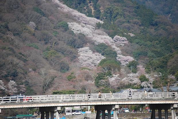 61 京都府京都市「嵐山」