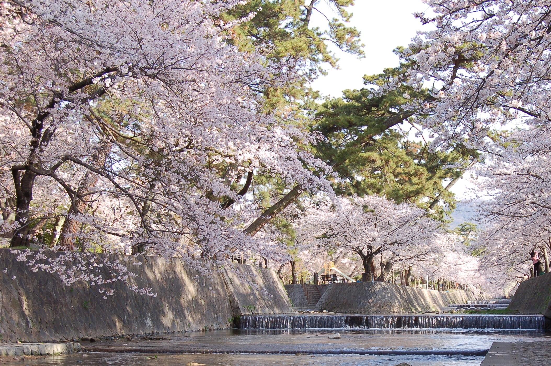 70 兵庫県西宮市「夙川公園」