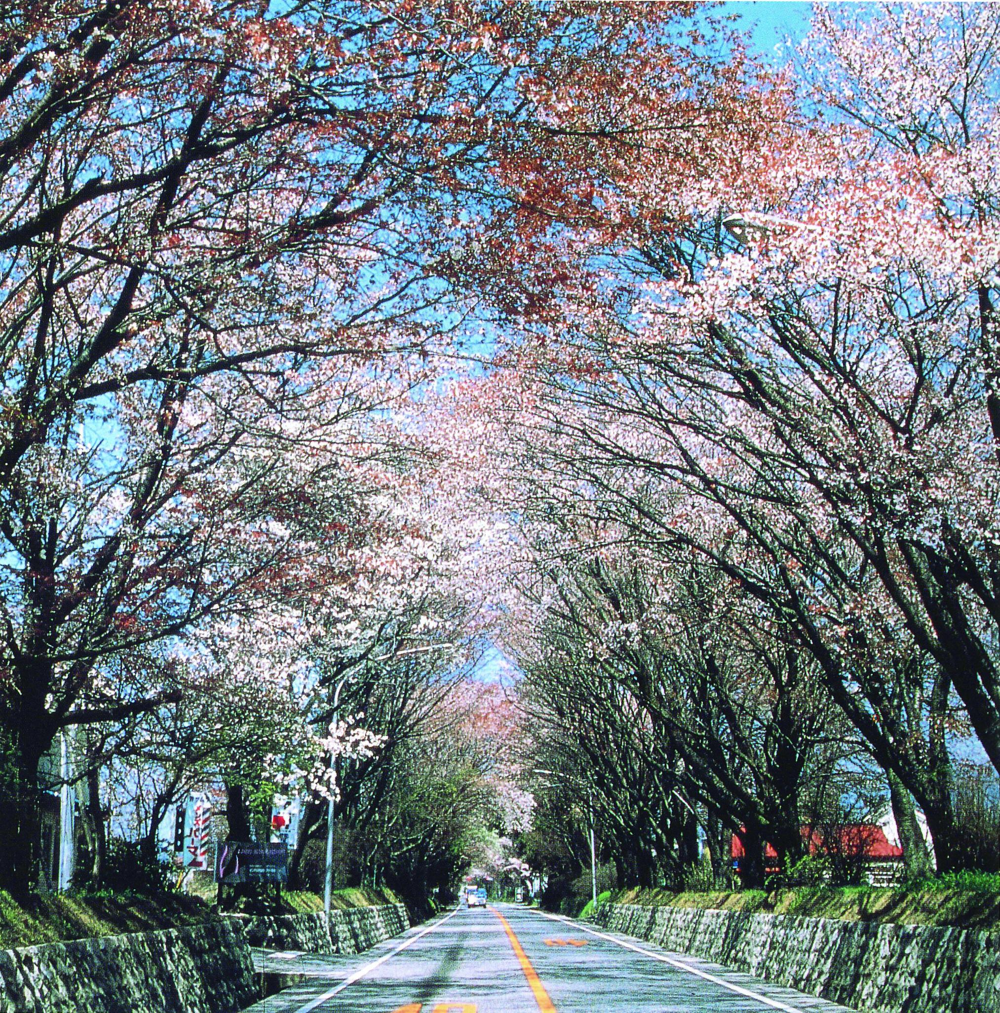 73_日光街道