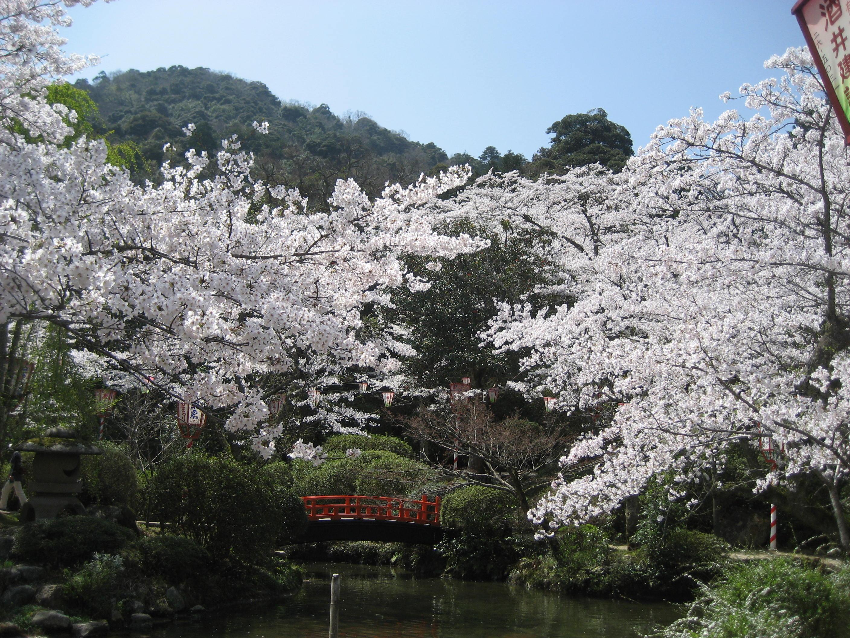 78 鳥取県倉吉市「打吹公園」