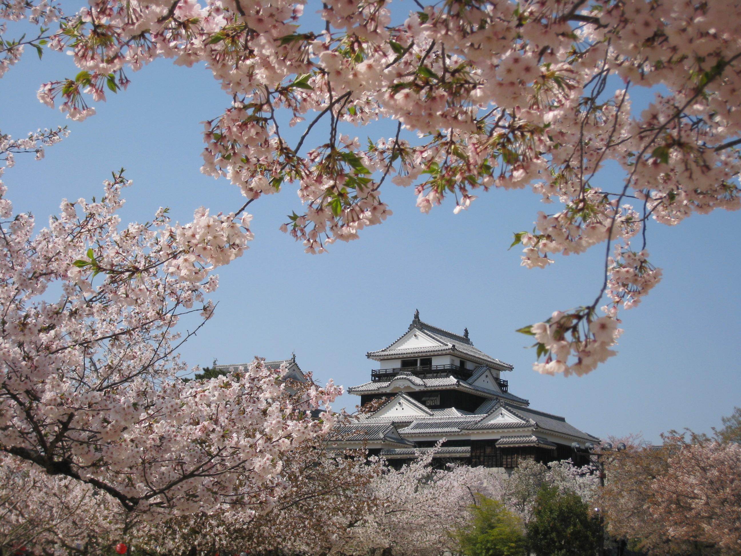 88 愛媛県松山市「城山公園」
