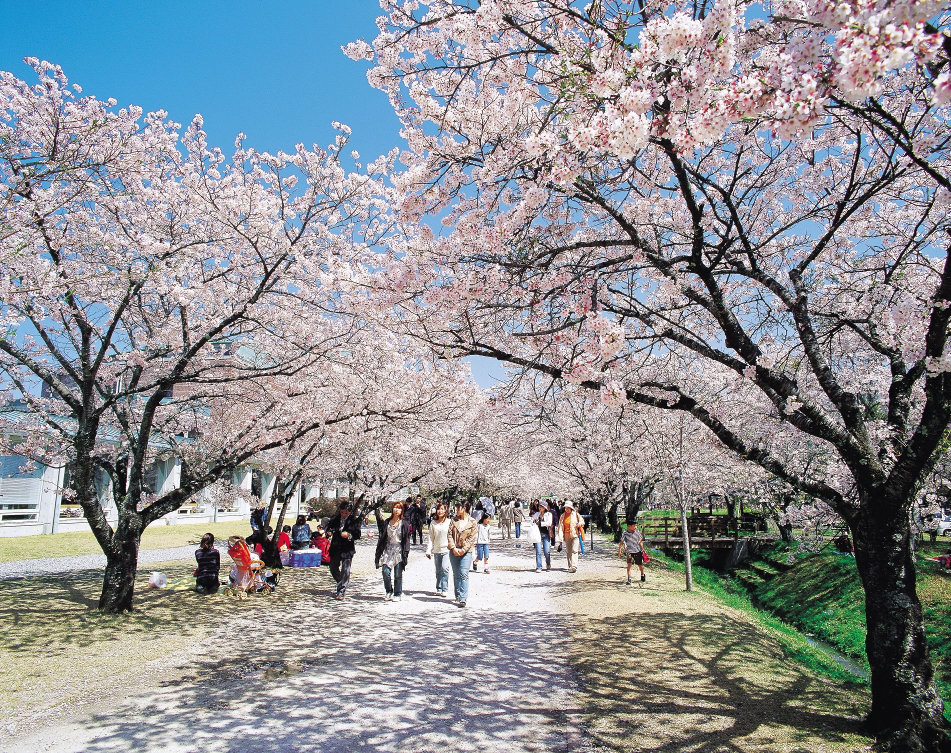 89 高知県香美市「鏡野公園」