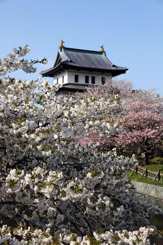 89_北海道松前公園
