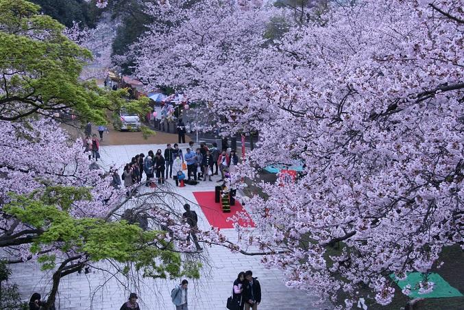 91 福岡県福岡市「西公園」
