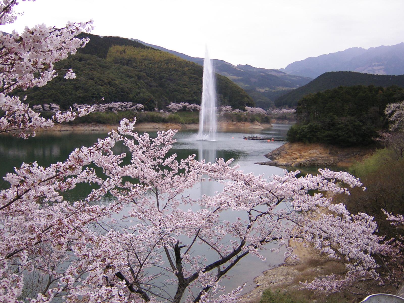 95 熊本県水上村「市房ダム湖畔」