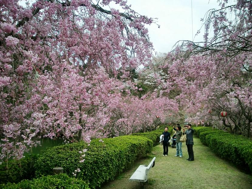 96 添田公園
