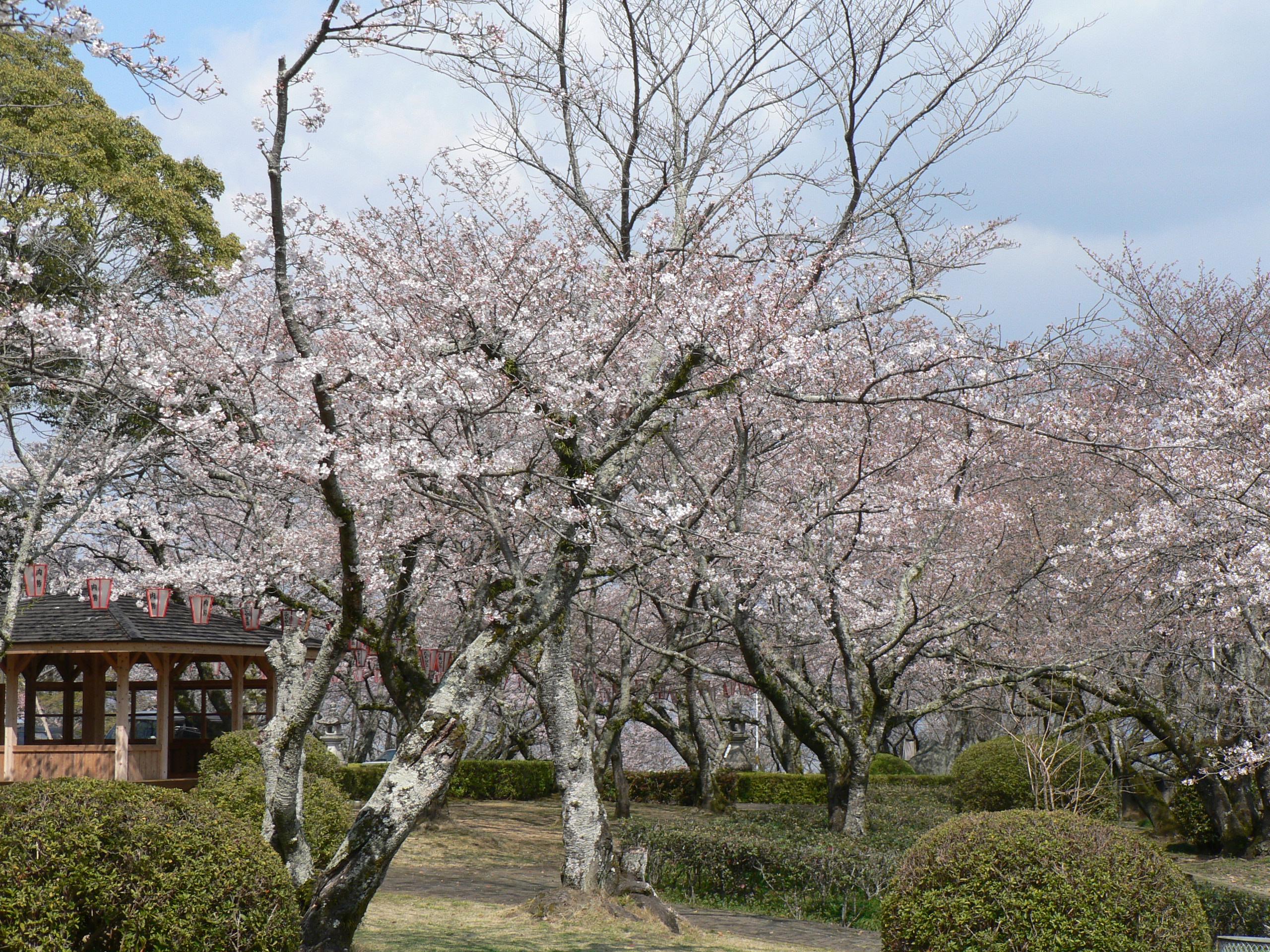86 徳島県徳島市「西部公園」