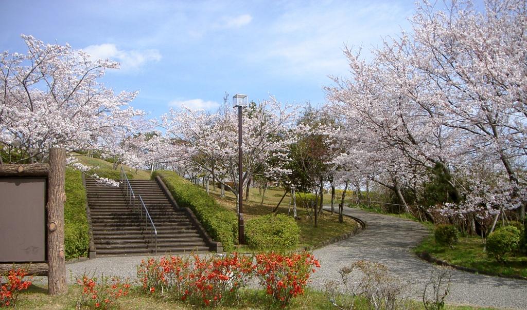 徳島県徳島市【眉山公園】